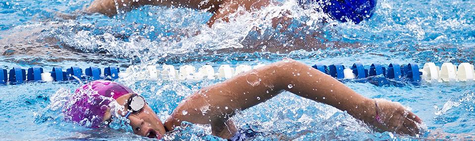 Festivita dell immacolata 8 dicembre piscina sant 39 alvise - Piscina valdobbiadene orari nuoto libero ...